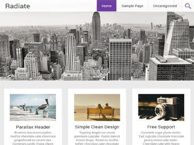 radiate-wordpress-theme